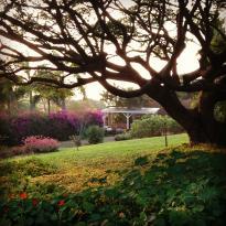 Enchanting Floral Gardens