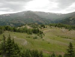 Mount Chapin