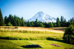 Mt. Hood Bed and Breakfast