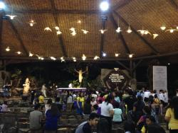 Mary Immaculate Parish - Nature Church