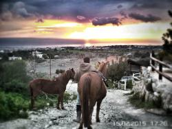 Horse Riding Paphos - Eagle Mountain Ranch