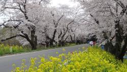 Kitamoto Nature Observation Park