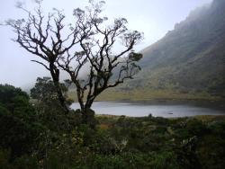 Parque Nacional Yacuri