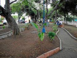 Parque De Las Hormigas