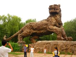 Lion and Tiger mountain