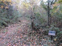 Ruins of Matsuyama Castle