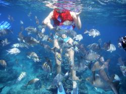 Playa Coral | UNDERWATERCUBA