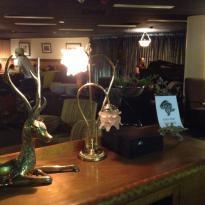 The Bison Bar