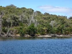 Walpole-Nornalup Inlet