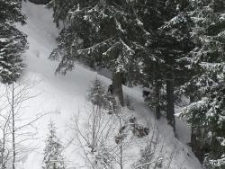 Skigebiet Damuls - Mellau - Faschina