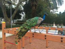 Quinta Da Alagoa