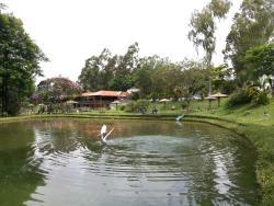 Pesque Pague Pantanal
