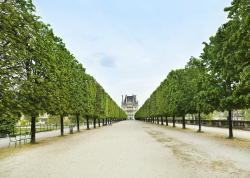 Paris (124407951)