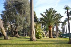 Parc Vigier