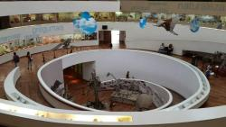 Museo De Ciencias Naturales Arturo Illia