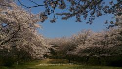 Chomeidate Park