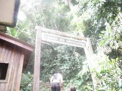 Trilha do Morro Sapucaitava