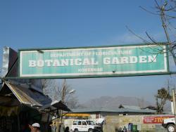 Botanical Garden Kokernag