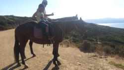 Skiathos Horseriding Centre