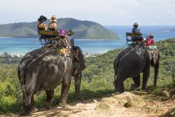 Siam Safari
