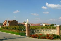 Gere Attila Pinceszete- Winery