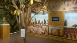 Ruta Sokolado Muziejus