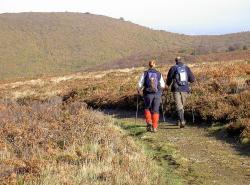 Walkers on theColerdige Way as it crosses the Quantock Hills