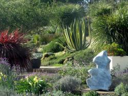 UCSC Arboretum
