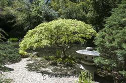 John P. Humes Japanese Stroll Garden