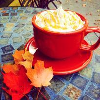 Koffee Kuppe