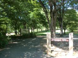 Musashino Park