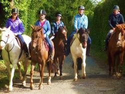 Castlefergus Equestrian