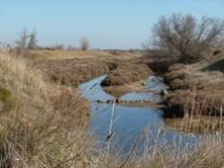 Reserve Naturelle de Bagnas