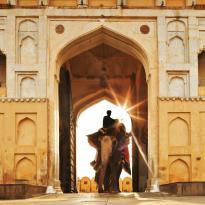 Jaipur (125287623)