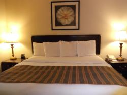 BEST WESTERN Suites Near Opryland