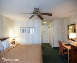 The Single King Room at The Wharf Inn