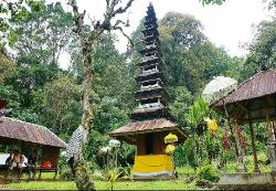 Bali Jungle Trekking - Tur Harian