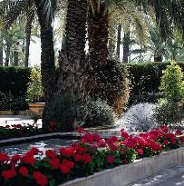 Jardín Milenio