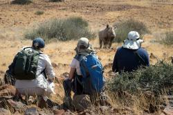 Wilderness Safaris Desert Rhino Camp