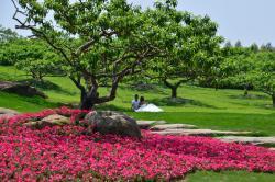 Chengdu Botanical Garden