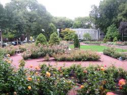 Merrick Rose Garden