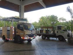The tour buses
