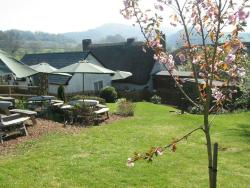 Sandy Park Inn