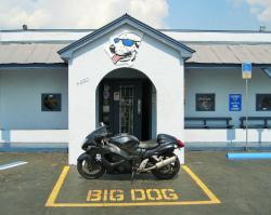 Big Dog Saloon