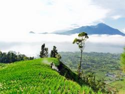 Bali Hiking Adventure