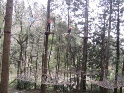 樹の上の冒険王国 ターザニア