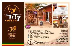 Marley Trip Coffee