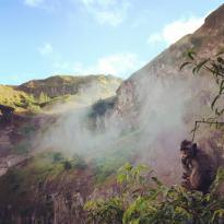 Bali Eco Tours