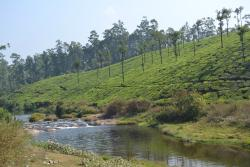Koolangal River