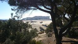 Panoramica de ls cercanias del Coto Doñana